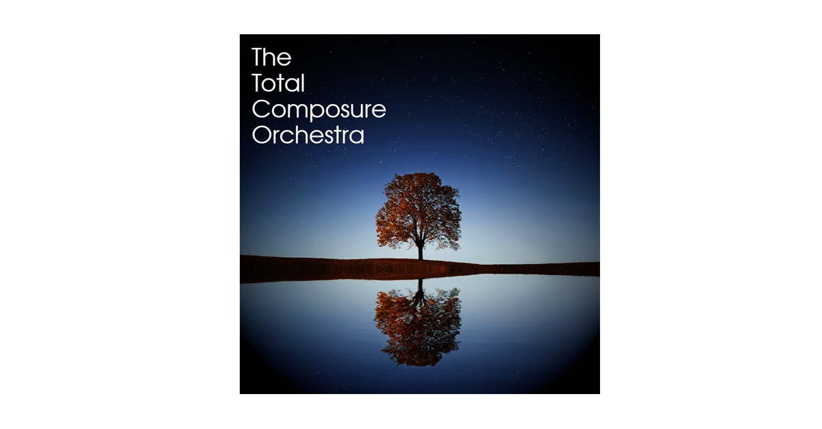 the total composure orchestra VST